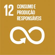 12 Consumo e Produção Responsáveis